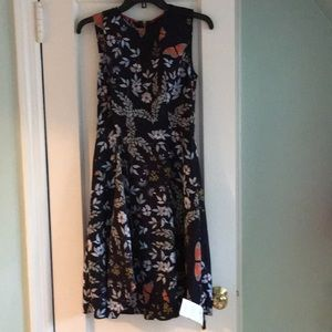 Ted Baker Janessa dress size 1 (US 4)